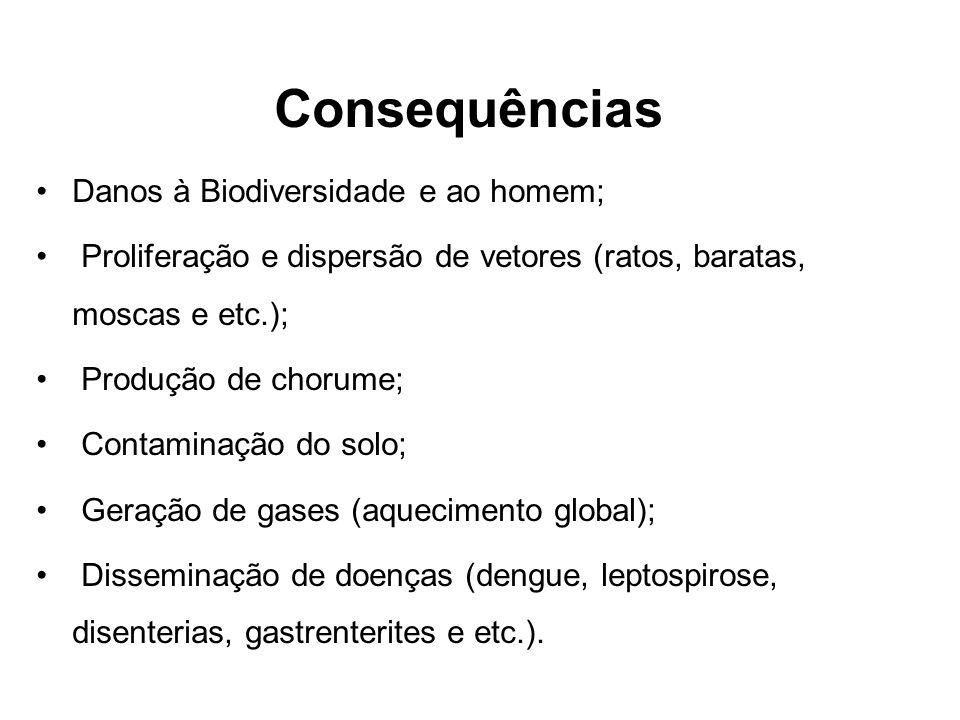 Consequências Danos à Biodiversidade e ao homem;