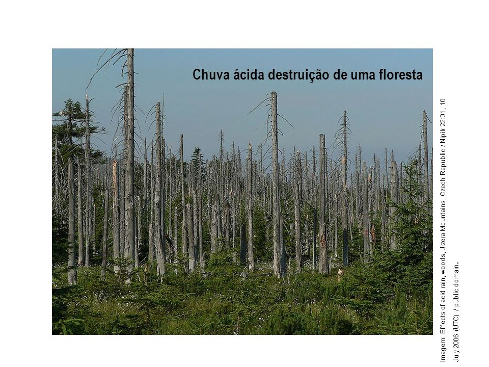Geografia, 1º ano Problemas ambientais urbanos
