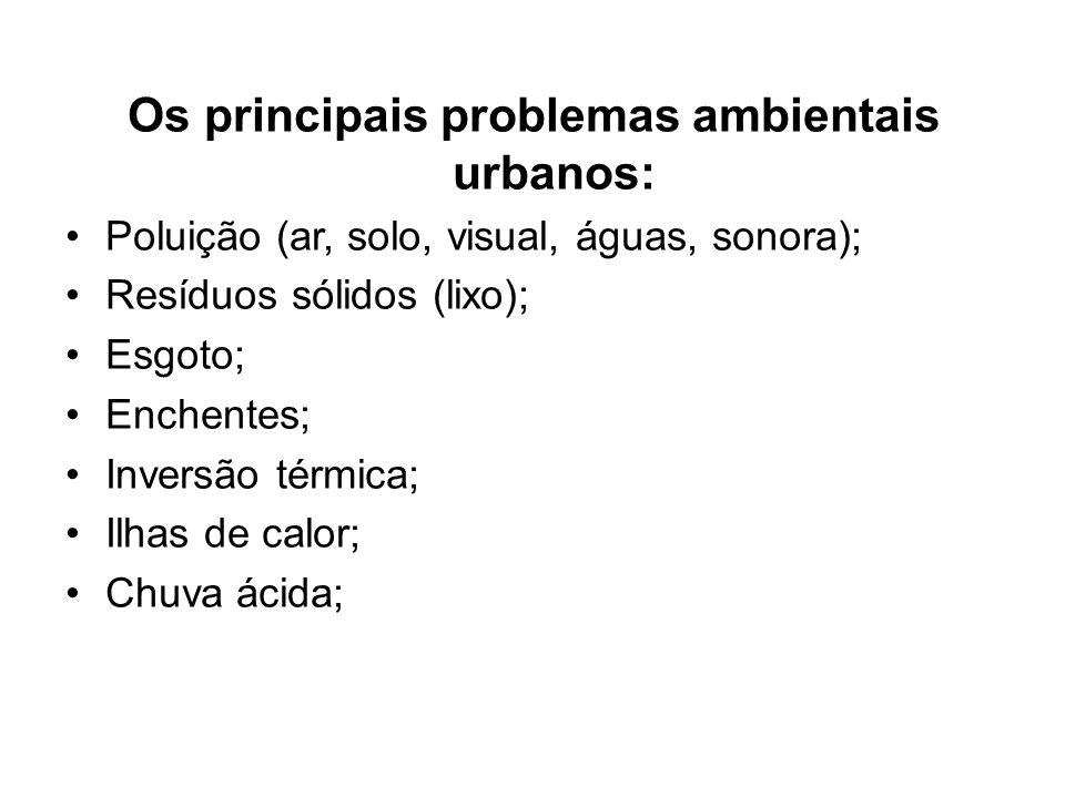 Os principais problemas ambientais urbanos: