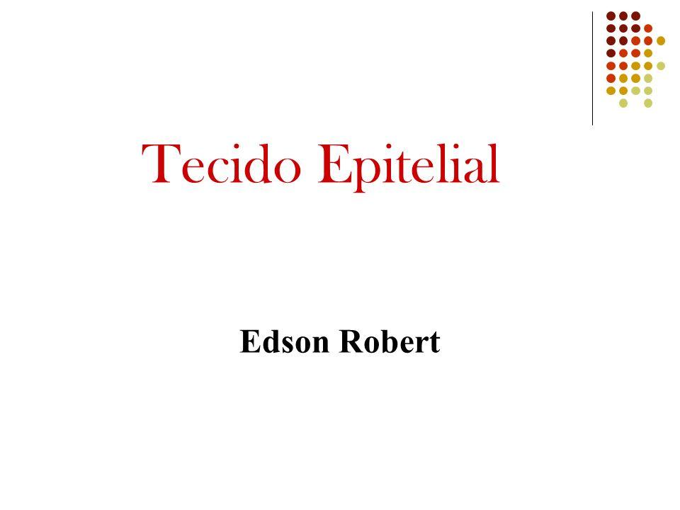 Tecido Epitelial Edson Robert