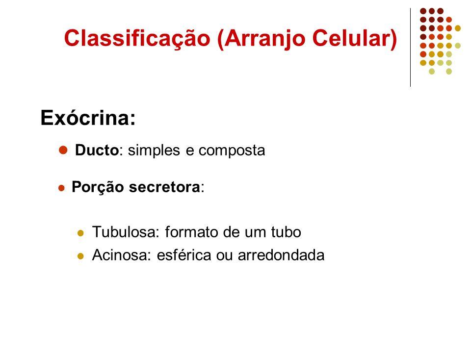 Classificação (Arranjo Celular)