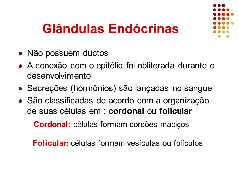 Glândulas Endócrinas Não possuem ductos