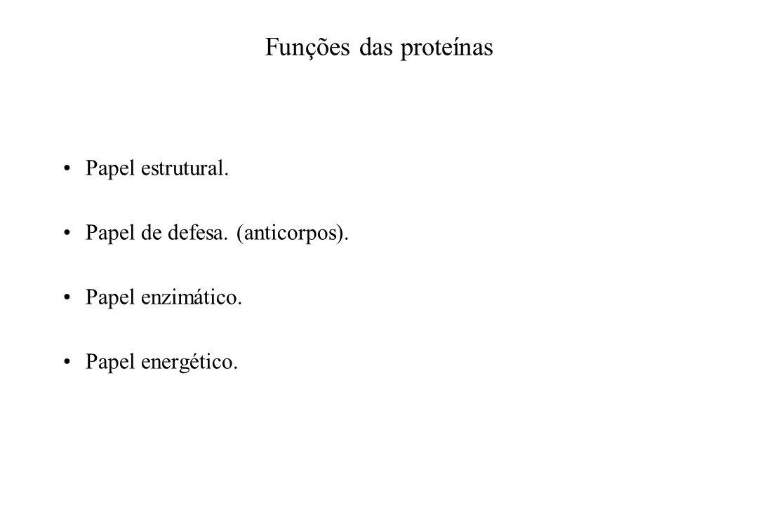 Funções das proteínas Papel estrutural. Papel de defesa. (anticorpos).