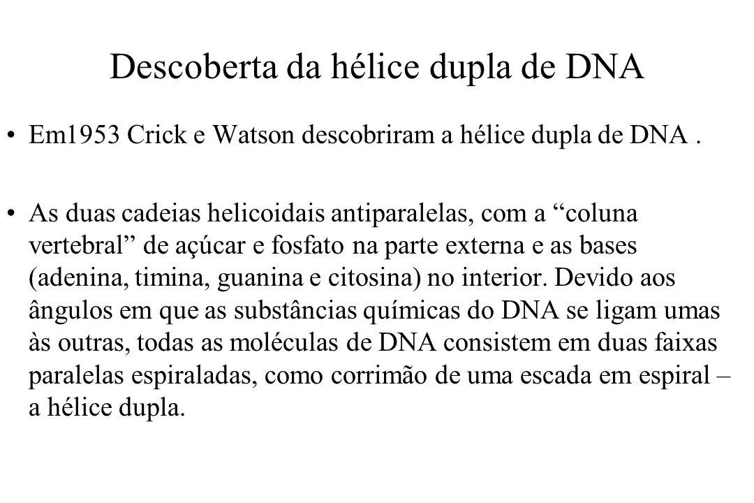 Descoberta da hélice dupla de DNA