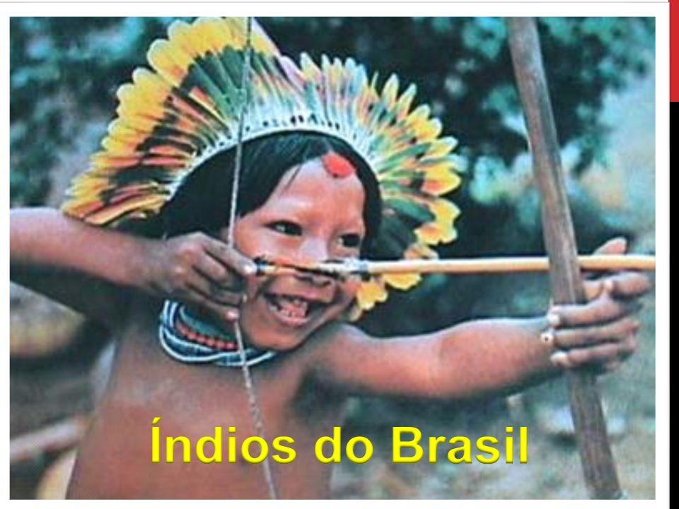 Índios do Brasil