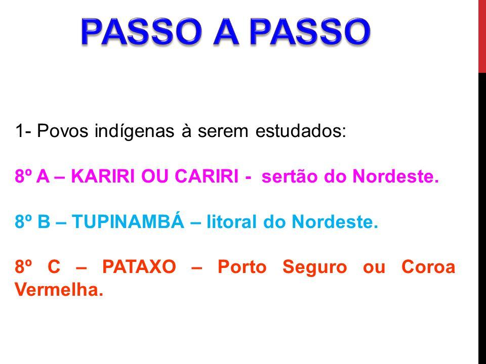 PASSO A PASSO 1- Povos indígenas à serem estudados: