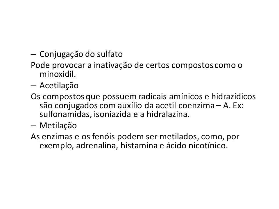 Conjugação do sulfato Pode provocar a inativação de certos compostos como o minoxidil. Acetilação.