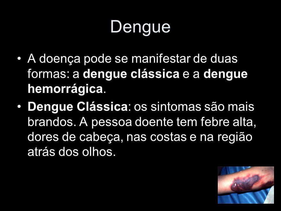 Dengue A doença pode se manifestar de duas formas: a dengue clássica e a dengue hemorrágica.