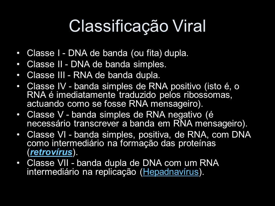 Classificação Viral Classe I - DNA de banda (ou fita) dupla.
