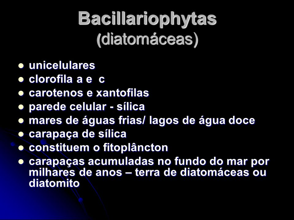 Bacillariophytas (diatomáceas)