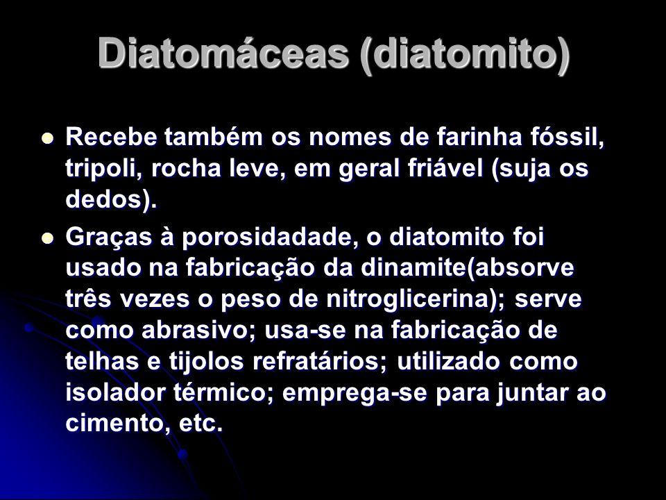Diatomáceas (diatomito)