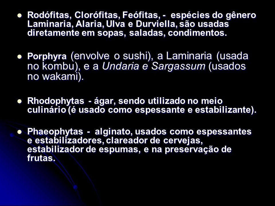 Rodófitas, Clorófitas, Feófitas, - espécies do gênero Laminaria, Alaria, Ulva e Durviella, são usadas diretamente em sopas, saladas, condimentos.