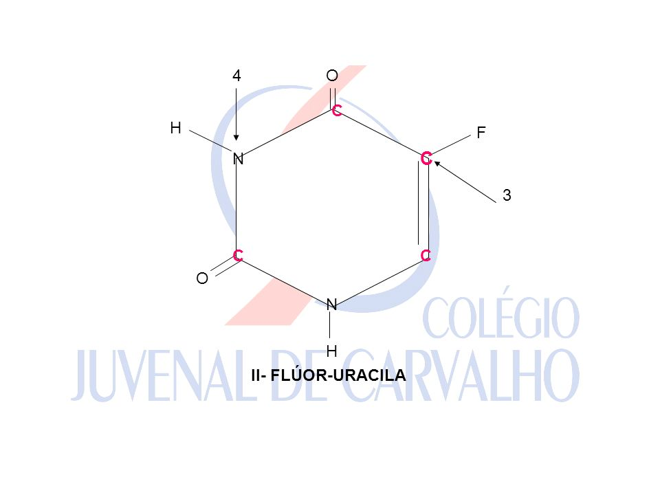N F H O 3 4 II- FLÚOR-URACILA C C C C C C C C