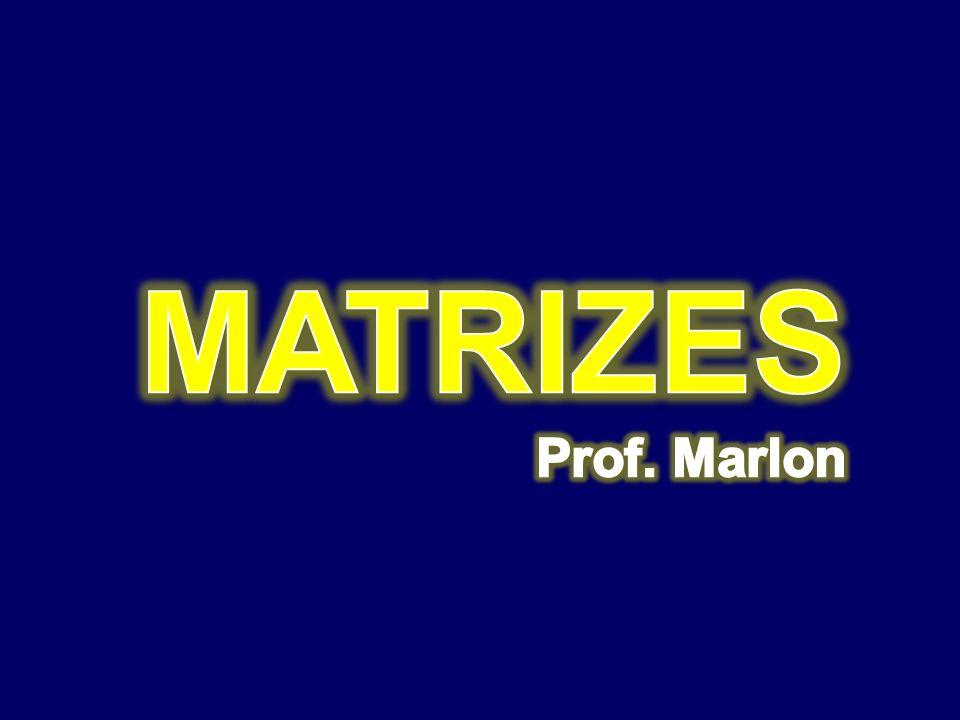 MATRIZES Prof. Marlon