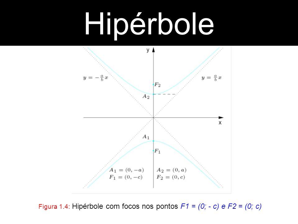 Figura 1.4: Hipérbole com focos nos pontos F1 = (0; - c) e F2 = (0; c)