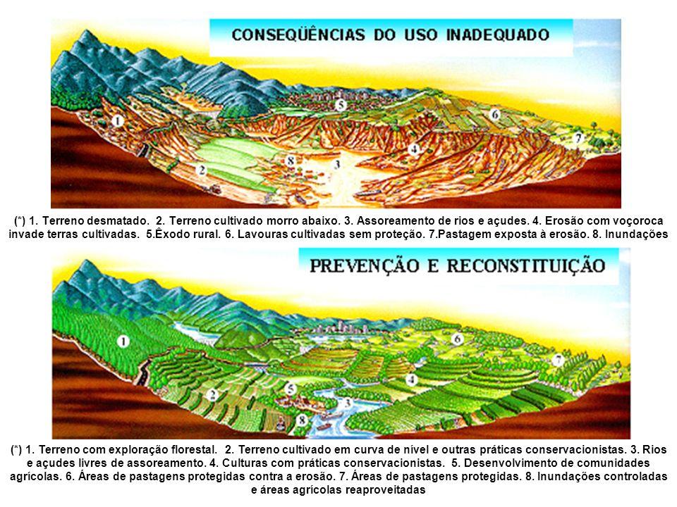 (. ) 1. Terreno desmatado. 2. Terreno cultivado morro abaixo. 3