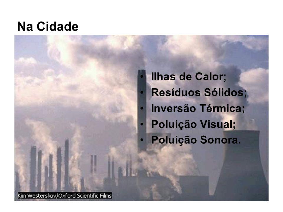 Na Cidade Ilhas de Calor; Resíduos Sólidos; Inversão Térmica;