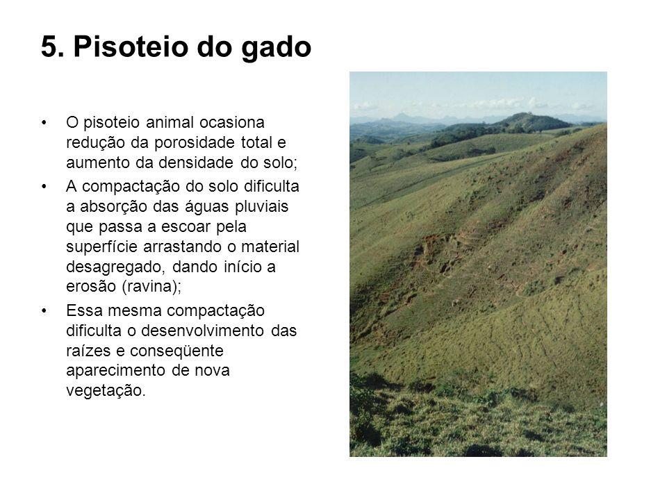 5. Pisoteio do gadoO pisoteio animal ocasiona redução da porosidade total e aumento da densidade do solo;