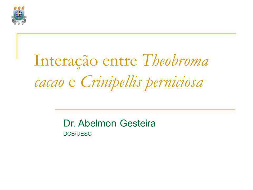 Interação entre Theobroma cacao e Crinipellis perniciosa