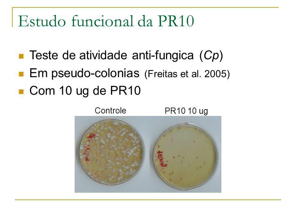 Estudo funcional da PR10 Teste de atividade anti-fungica (Cp)