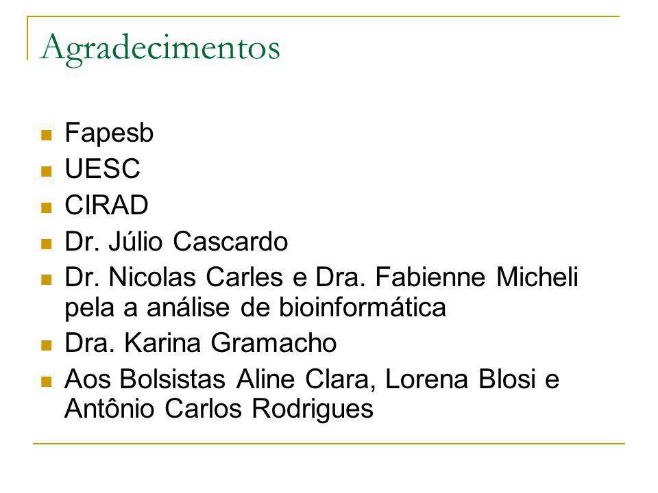 Agradecimentos Fapesb UESC CIRAD Dr. Júlio Cascardo