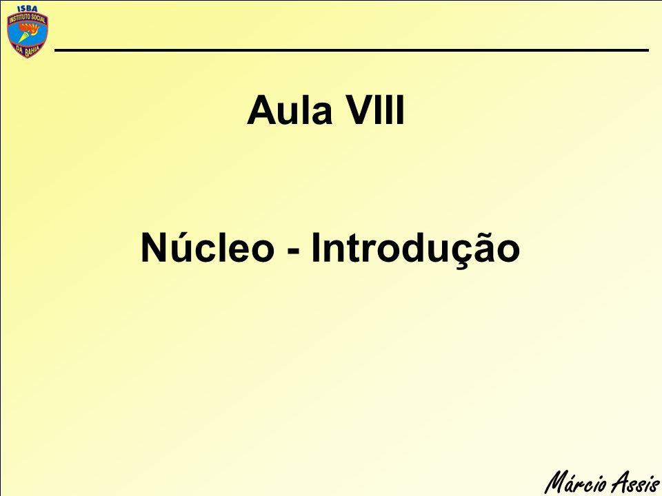 Aula VIII Núcleo - Introdução