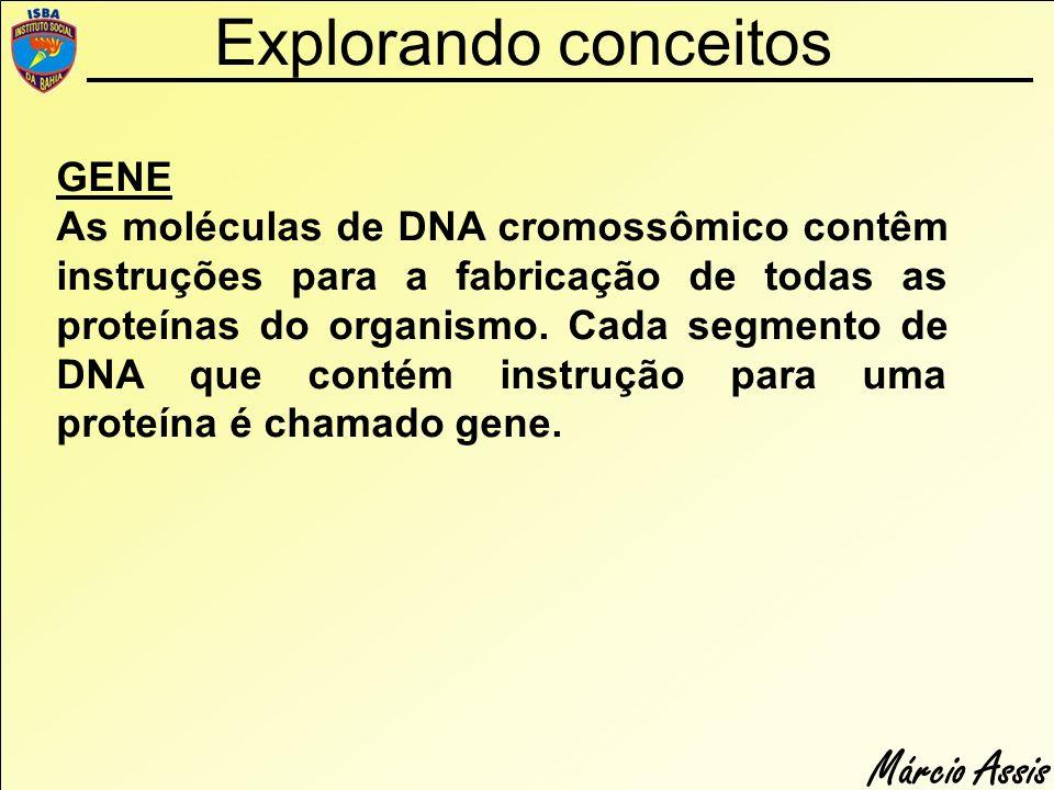 Explorando conceitos GENE