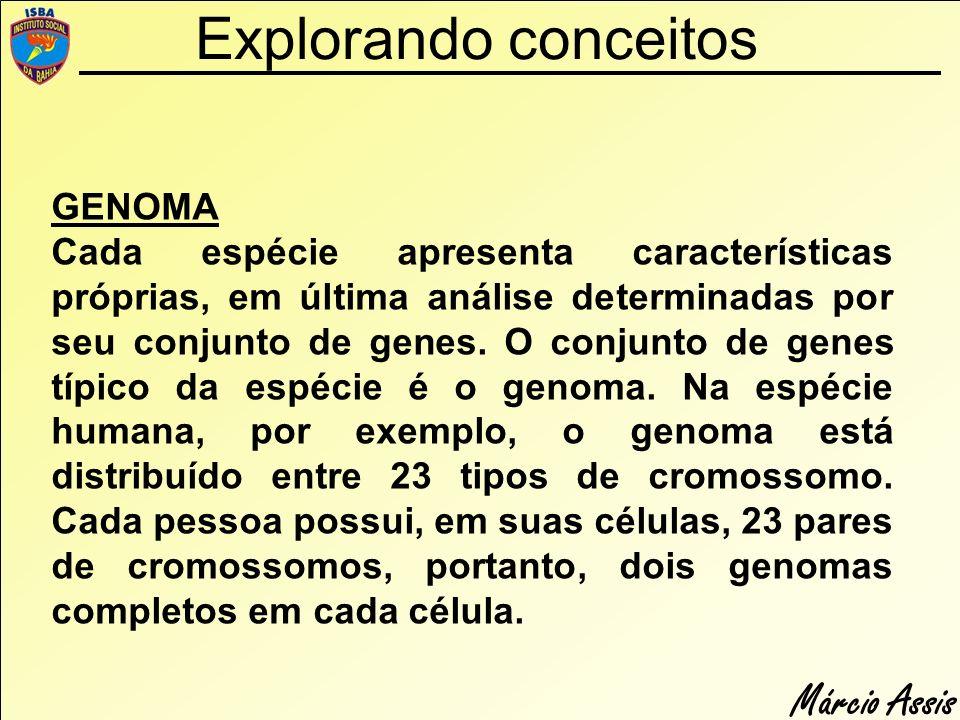 Explorando conceitos GENOMA