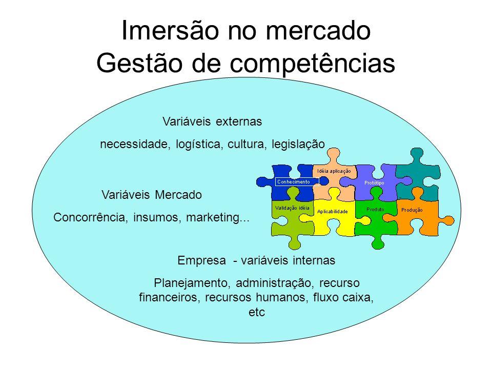 Imersão no mercado Gestão de competências