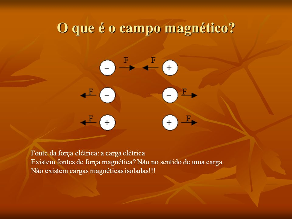 O que é o campo magnético