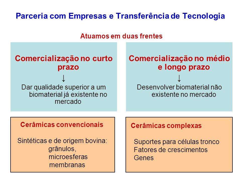 Parceria com Empresas e Transferência de Tecnologia