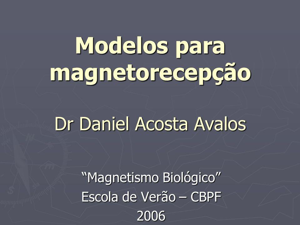 Modelos para magnetorecepção Dr Daniel Acosta Avalos