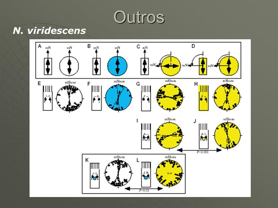 Outros N. viridescens
