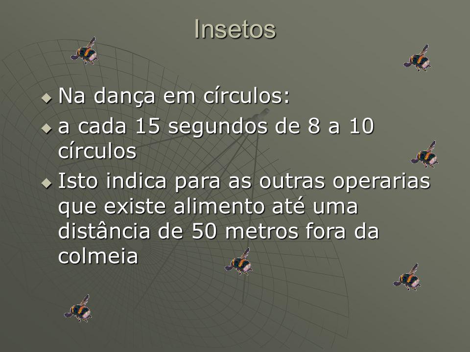 Insetos Na dança em círculos: a cada 15 segundos de 8 a 10 círculos