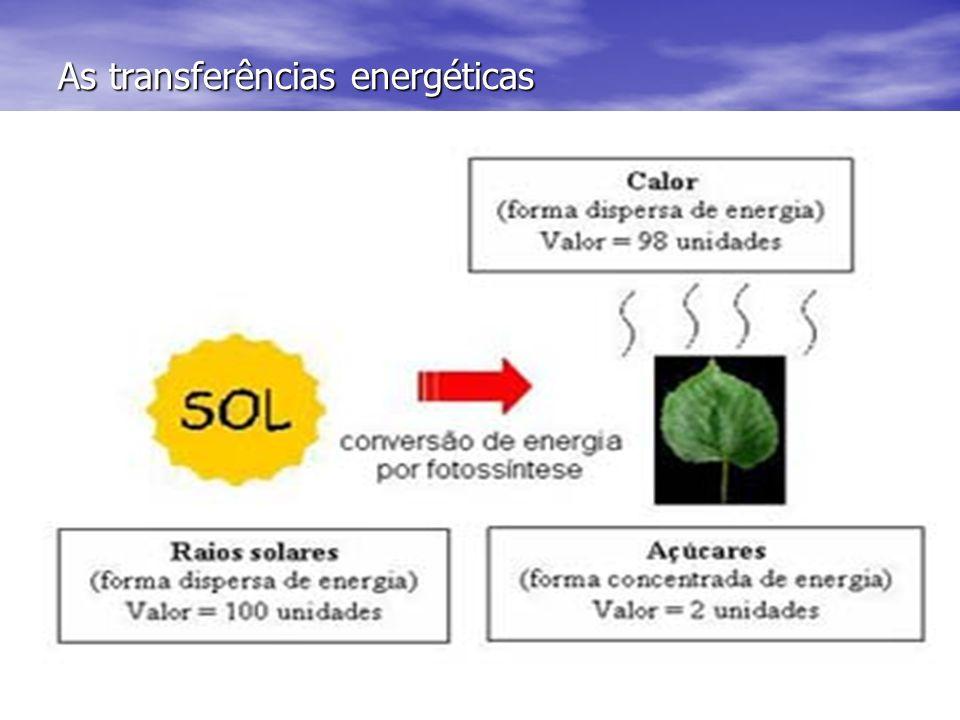 As transferências energéticas