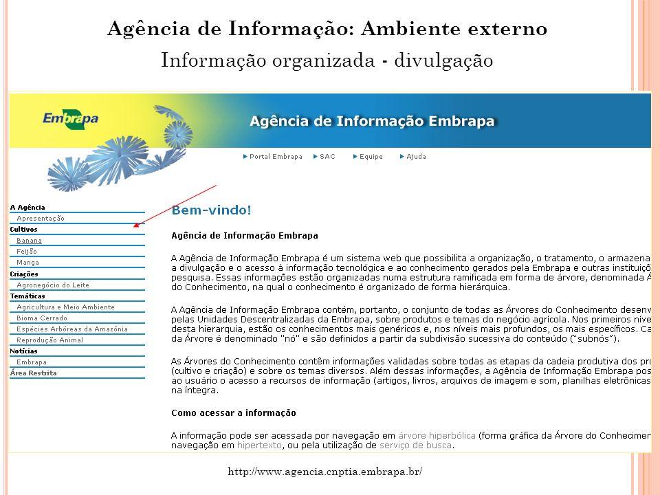 Agência de Informação: Ambiente externo