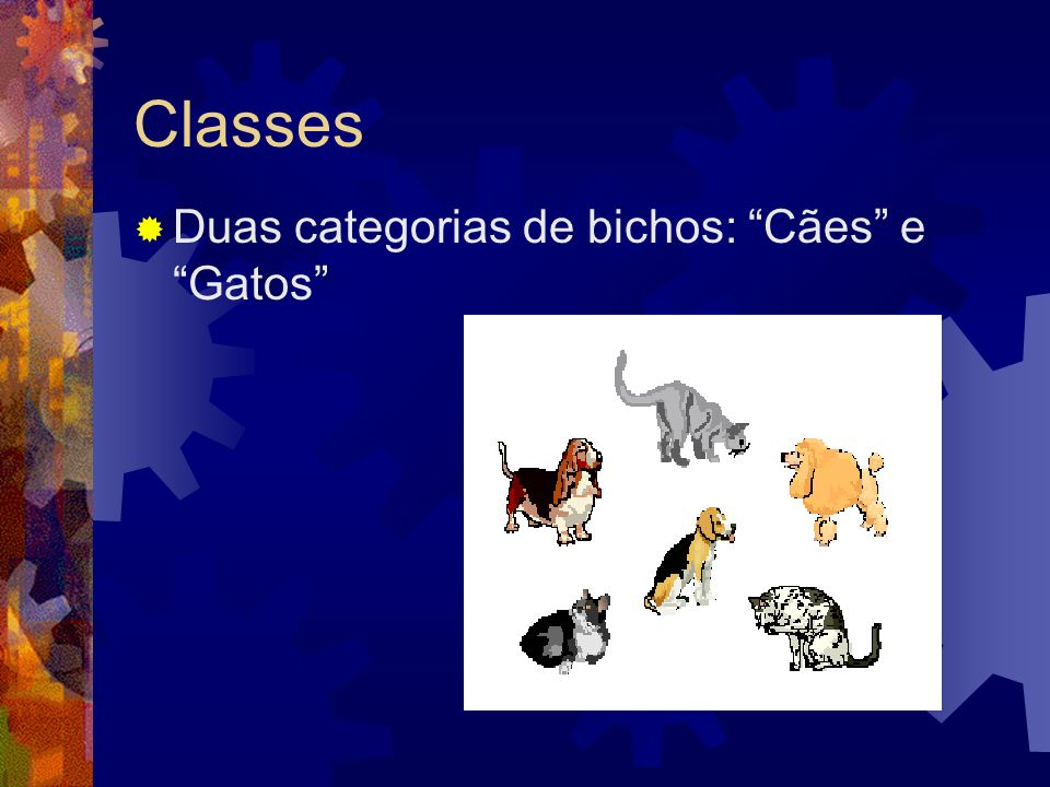Classes Duas categorias de bichos: Cães e Gatos