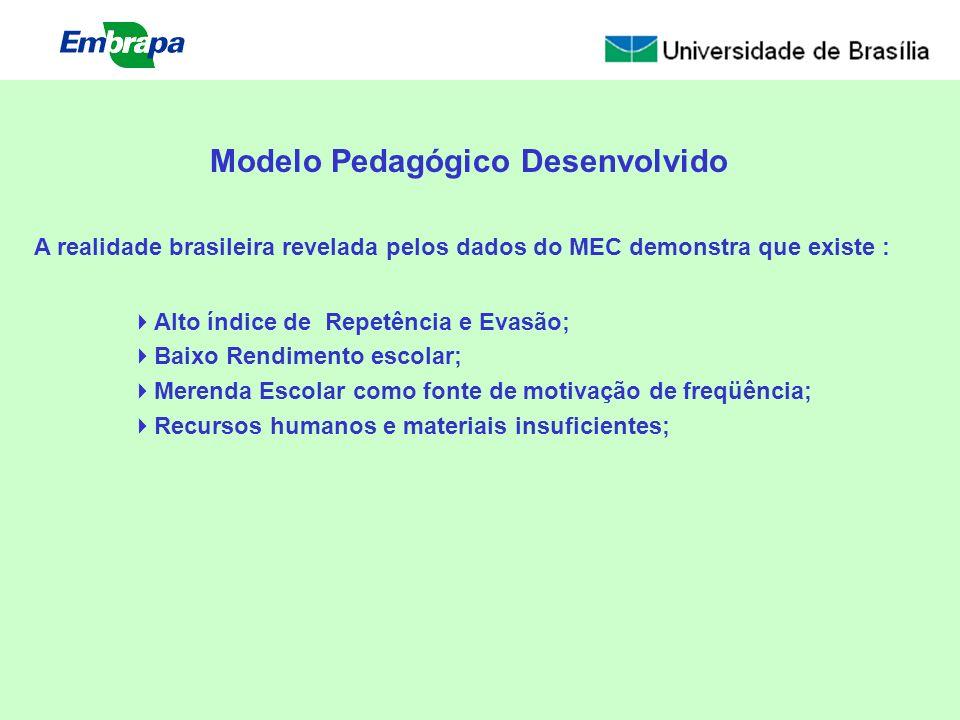 Modelo Pedagógico Desenvolvido