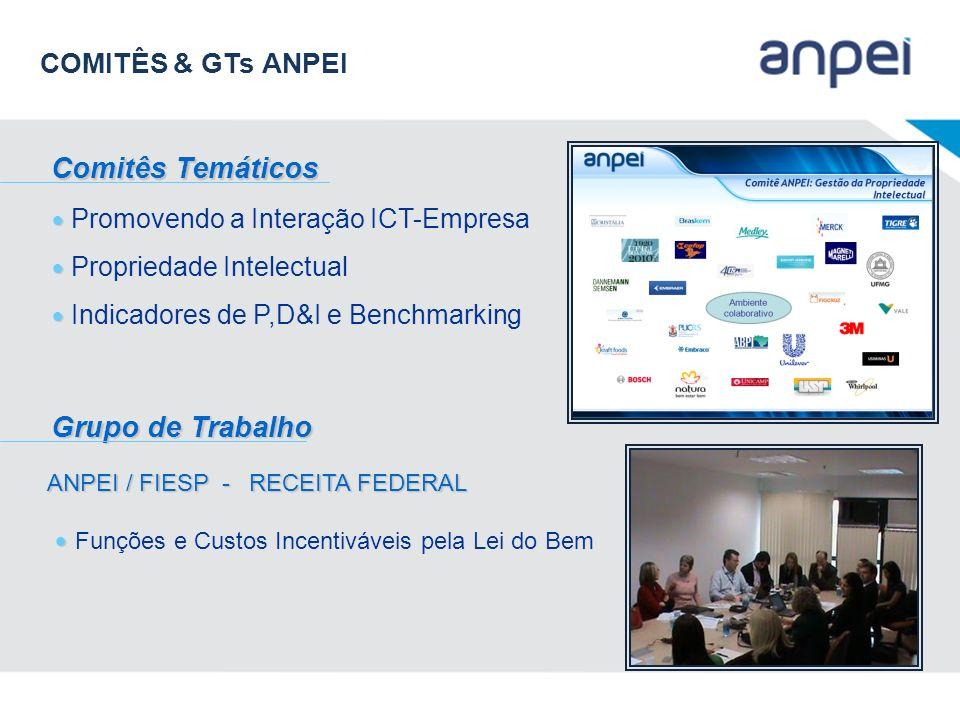 COMITÊS & GTs ANPEI Comitês Temáticos Grupo de Trabalho