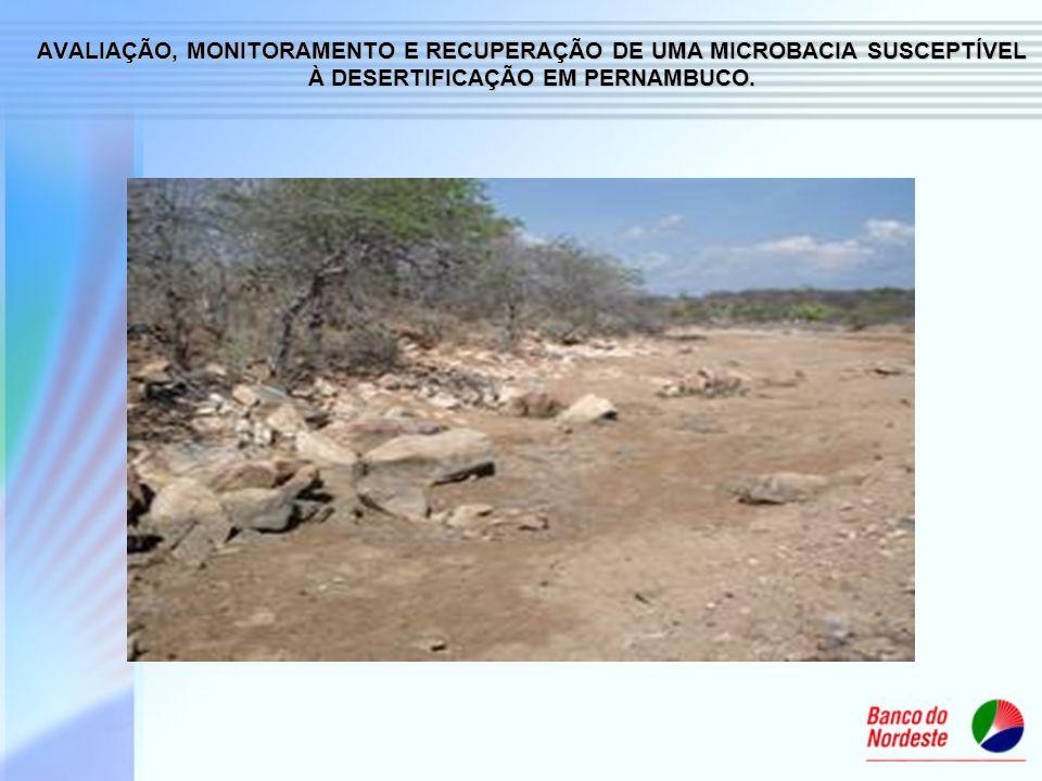AVALIAÇÃO, MONITORAMENTO E RECUPERAÇÃO DE UMA MICROBACIA SUSCEPTÍVEL À DESERTIFICAÇÃO EM PERNAMBUCO.