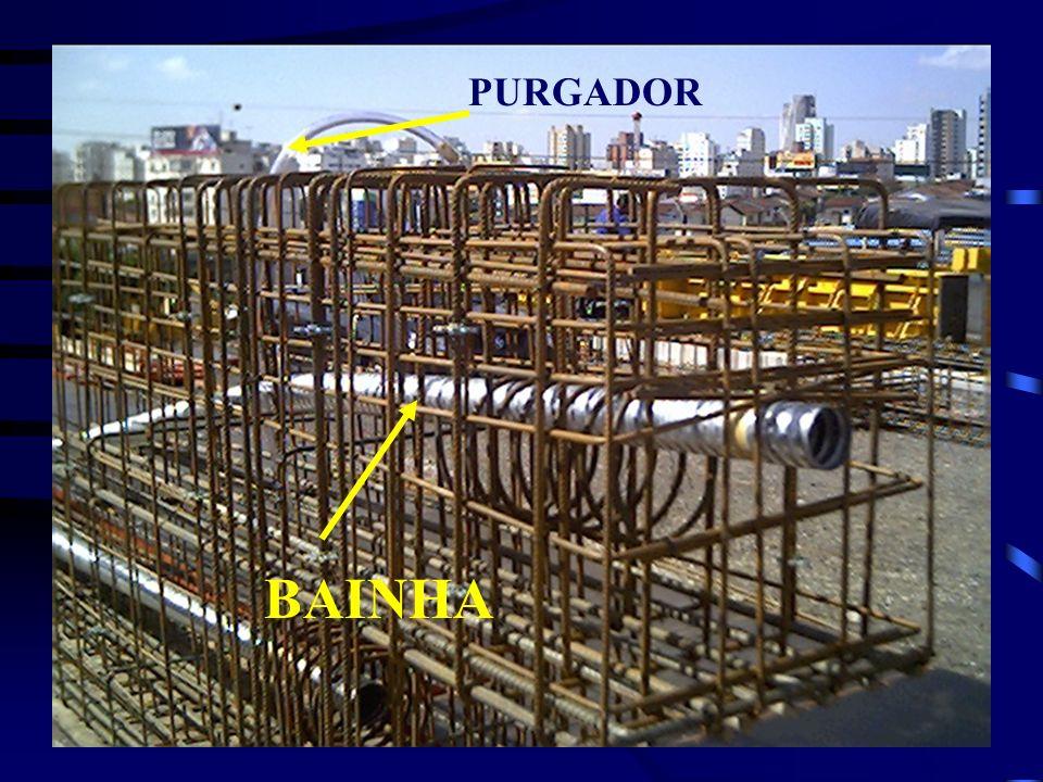 PURGADOR BAINHA
