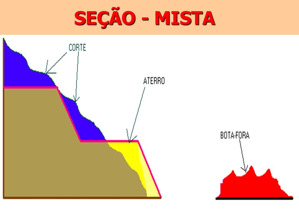 SEÇÃO - MISTA
