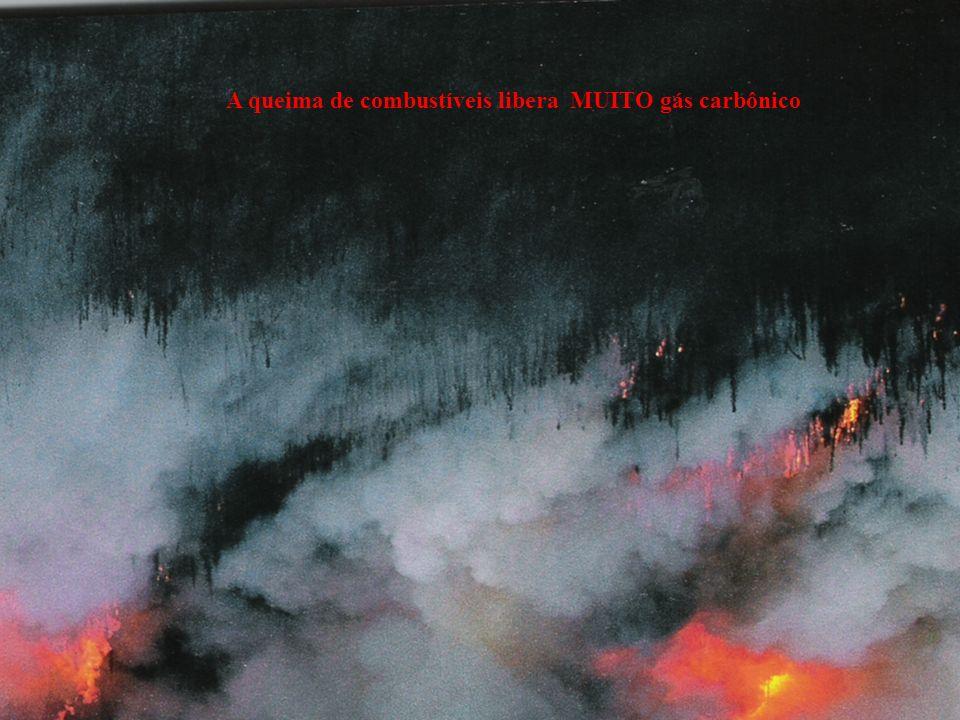 A queima de combustíveis libera MUITO gás carbônico