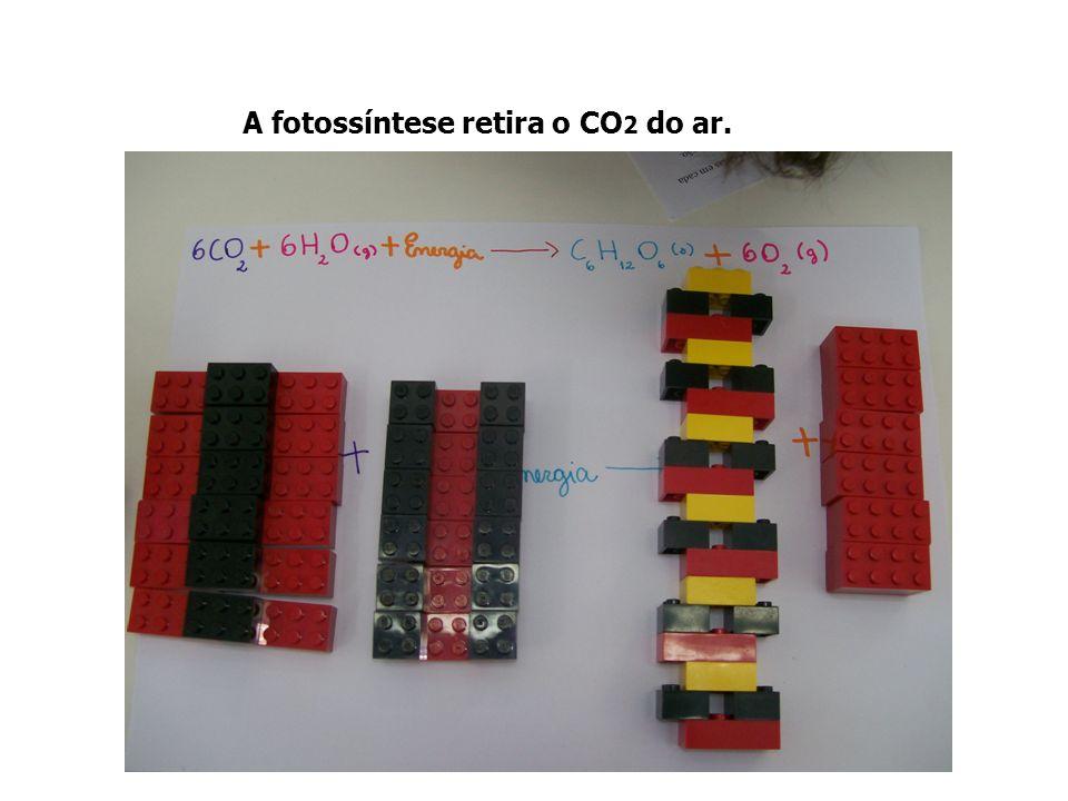 A fotossíntese retira o CO2 do ar.