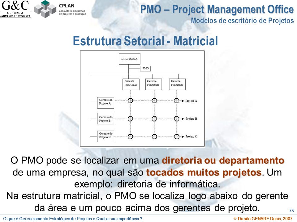 Estrutura Setorial - Matricial