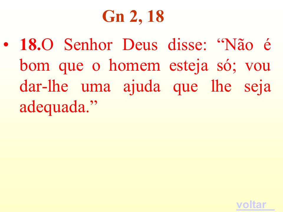 Gn 2, 18 18.O Senhor Deus disse: Não é bom que o homem esteja só; vou dar-lhe uma ajuda que lhe seja adequada.