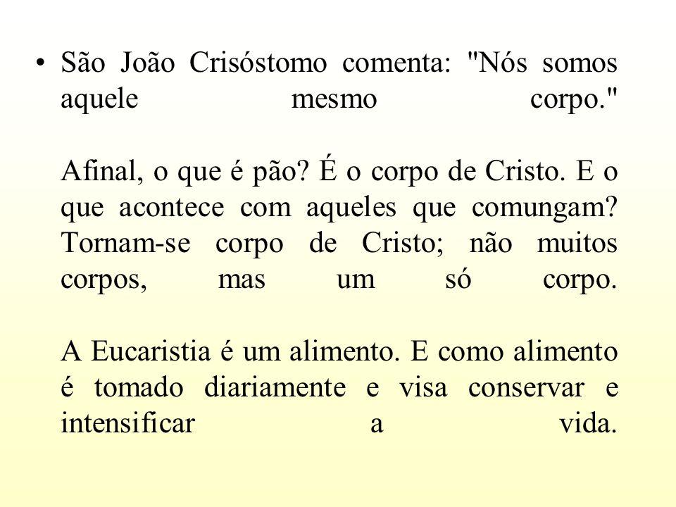 São João Crisóstomo comenta: Nós somos aquele mesmo corpo