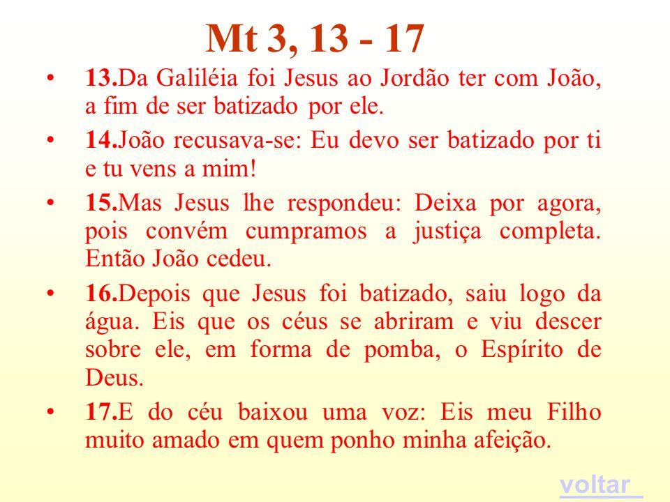 Mt 3, 13 - 17 13.Da Galiléia foi Jesus ao Jordão ter com João, a fim de ser batizado por ele.