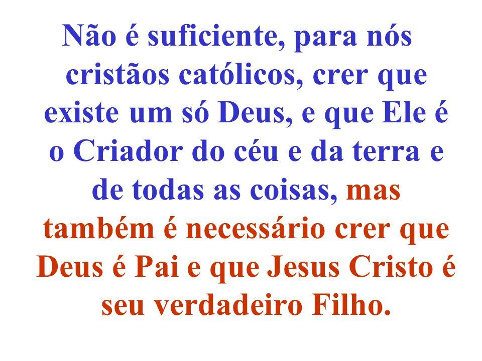 Não é suficiente, para nós cristãos católicos, crer que existe um só Deus, e que Ele é o Criador do céu e da terra e de todas as coisas, mas também é necessário crer que Deus é Pai e que Jesus Cristo é seu verdadeiro Filho.