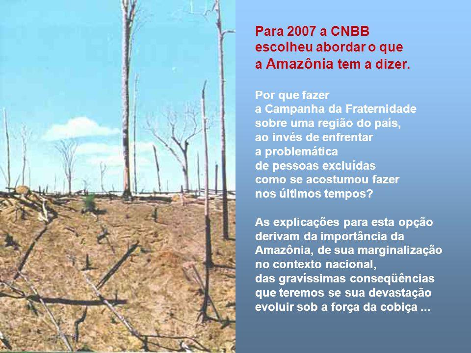 Para 2007 a CNBB escolheu abordar o que a Amazônia tem a dizer.